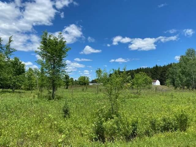 Gerndt Lane, Suring, WI 54174 (#50242222) :: Carolyn Stark Real Estate Team