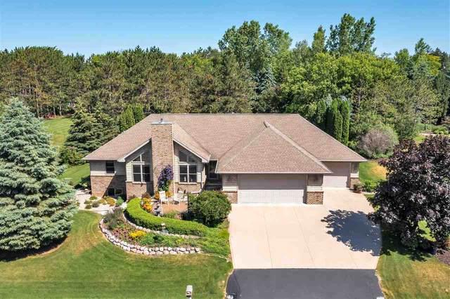411 N Pine Grove Lane, Hortonville, WI 54944 (#50242670) :: Todd Wiese Homeselling System, Inc.