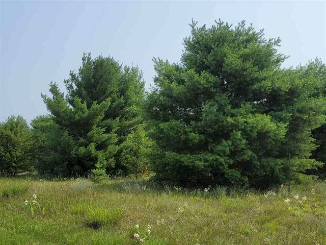 19TH Avenue, Wautoma, WI 54982 (#50244401) :: Symes Realty, LLC
