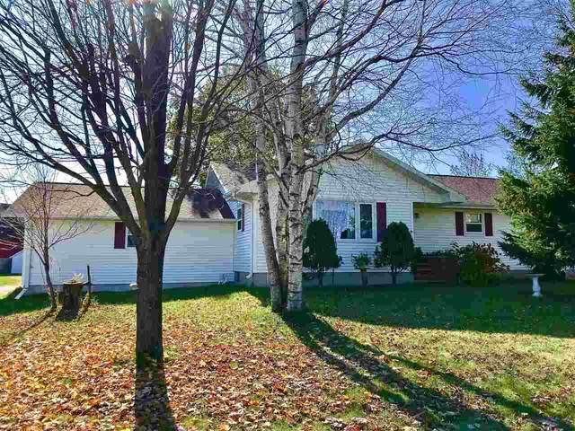 7127 Lower Road, Sobieski, WI 54171 (#50244413) :: Todd Wiese Homeselling System, Inc.