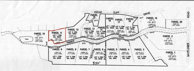 Timber Trail, Hortonville, WI 54944 (#50244455) :: Symes Realty, LLC