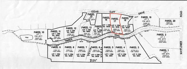 Timber Trail, Hortonville, WI 54944 (#50244459) :: Symes Realty, LLC
