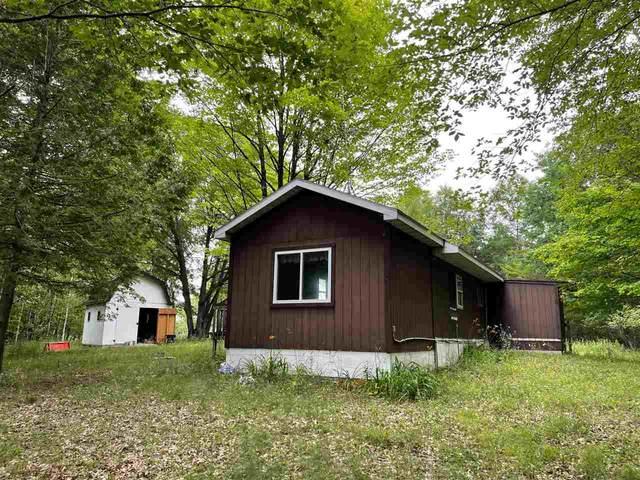 9971 Wescott Lake Lane, Pound, WI 54161 (#50244689) :: Todd Wiese Homeselling System, Inc.
