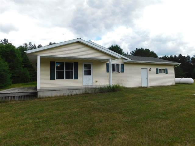 E4439 Dunedin Lane, Marion, WI 54950 (#50244864) :: Todd Wiese Homeselling System, Inc.