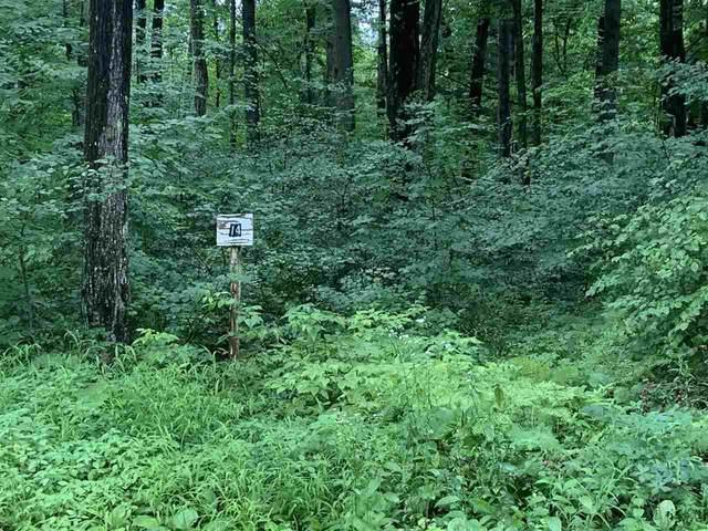 N1169 Grey Eagle Trail, Keshena, WI 54135 (#50244870) :: Carolyn Stark Real Estate Team