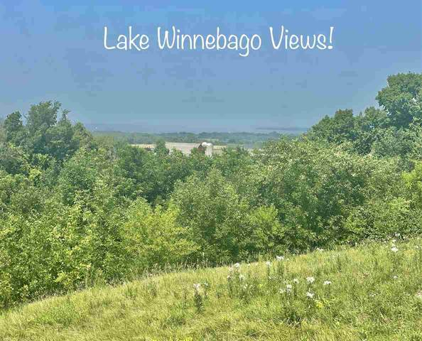 Schumacher Road, Malone, WI 53049 (#50245061) :: Symes Realty, LLC