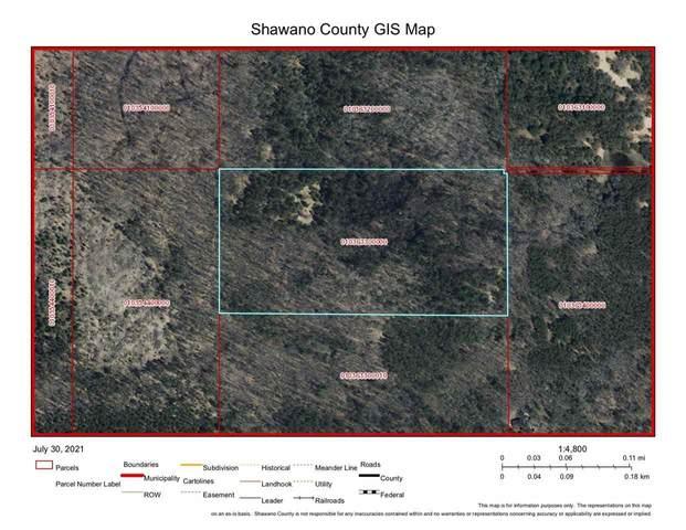 Hunting Road, Shawano, WI 54166 (#50245160) :: Symes Realty, LLC
