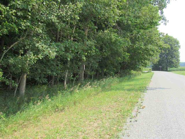 Nelson Road, Gillett, WI 54124 (#50245408) :: Symes Realty, LLC