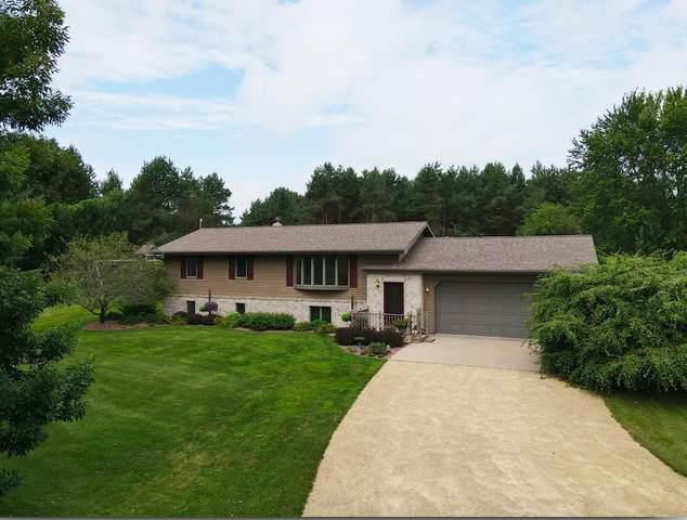 N10155 Henn Road, Clintonville, WI 54929 (#50246562) :: Carolyn Stark Real Estate Team