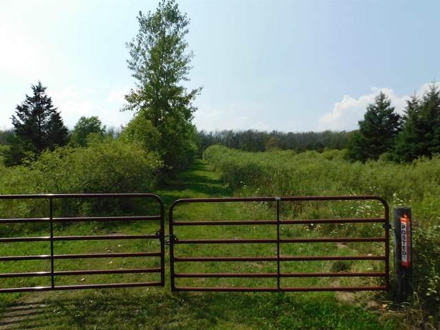 N8751 Hickory Drive, Algoma, WI 54201 (#50246580) :: Symes Realty, LLC