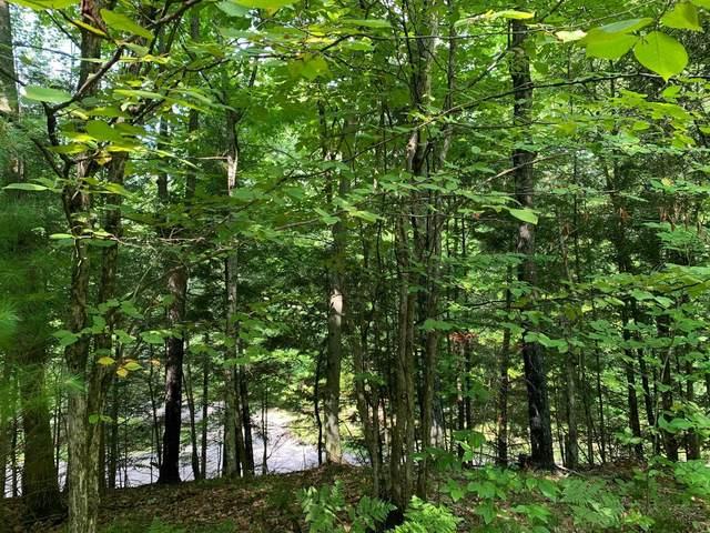 17519 W Wheeler Lake Lane, Lakewood, WI 54138 (#50246920) :: Symes Realty, LLC