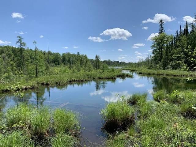 Lily Lake Lane, Pickerel, WI 54465 (#50246926) :: Symes Realty, LLC
