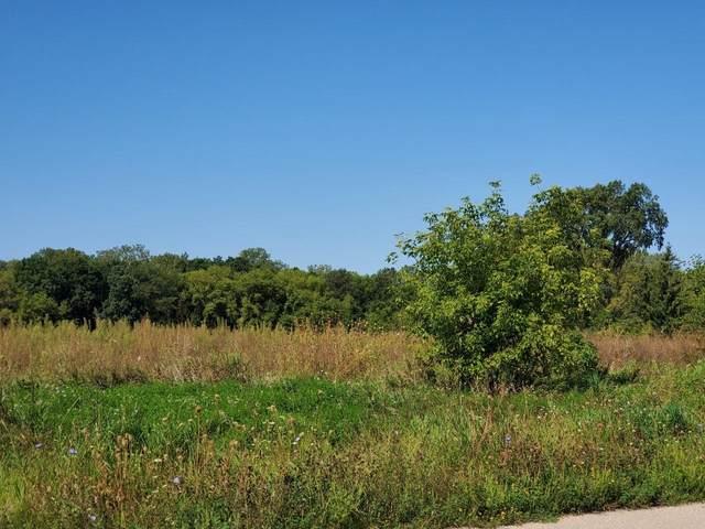 Rustic Oaks Drive, Winneconne, WI 54986 (#50247143) :: Symes Realty, LLC