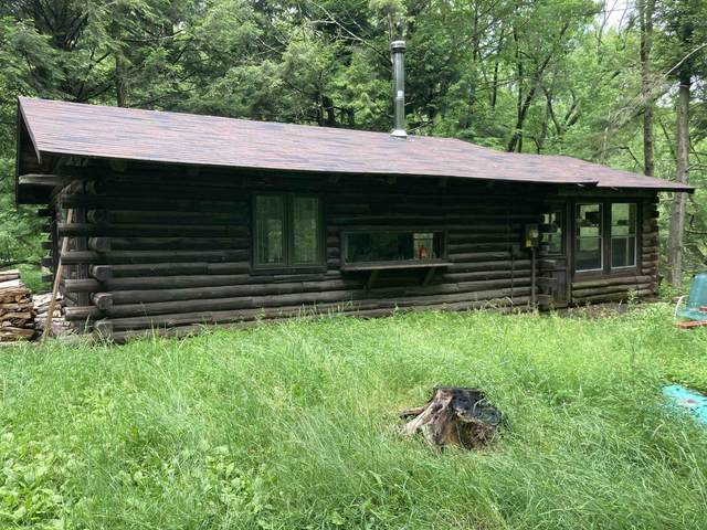 W13752 School House Road, Bowler, WI 54416 (#50247575) :: Town & Country Real Estate