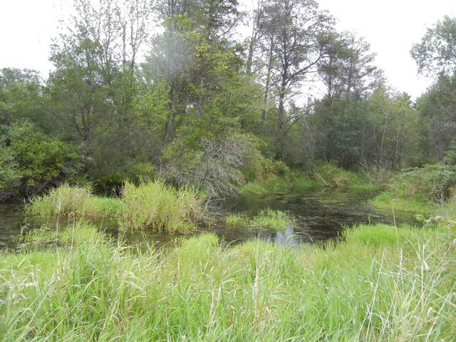 1514A Hwy G, Coloma, WI 54930 (#50247838) :: Town & Country Real Estate