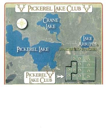 Grass Lake Road, Pickerel, WI 54465 (#50248003) :: Symes Realty, LLC