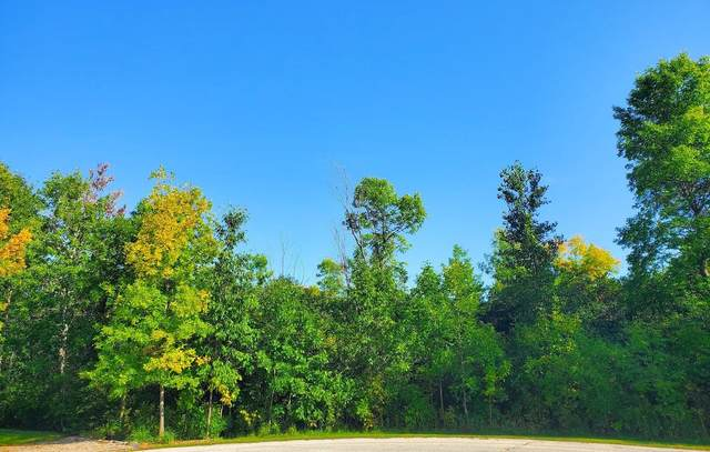Whistling Wind Drive, De Pere, WI 54115 (#50248062) :: Symes Realty, LLC