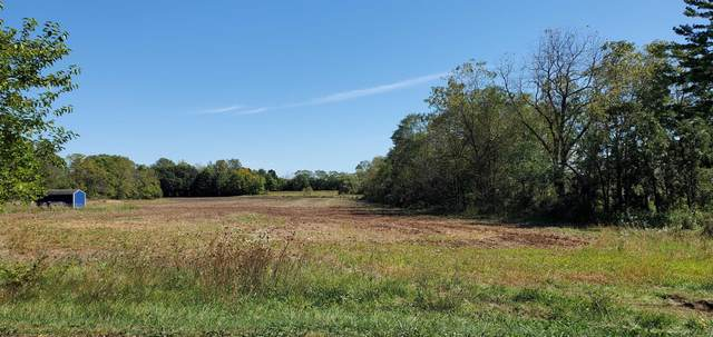 S Webster Avenue, Omro, WI 54963 (#50248211) :: Symes Realty, LLC