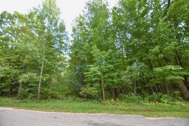 S Long Lake Road, Wild Rose, WI 54984 (#50248336) :: Symes Realty, LLC