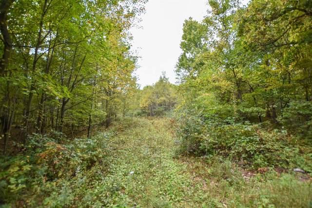 S Long Lake Road, Wild Rose, WI 54984 (#50248337) :: Symes Realty, LLC