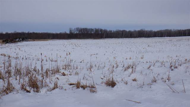 Fitzgerald Road, New London, WI 54961 (#50248544) :: Symes Realty, LLC