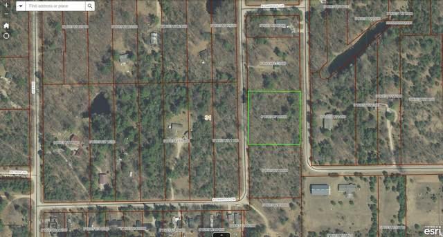 S Oakwood Circle, Neshkoro, WI 54960 (#50248857) :: Symes Realty, LLC