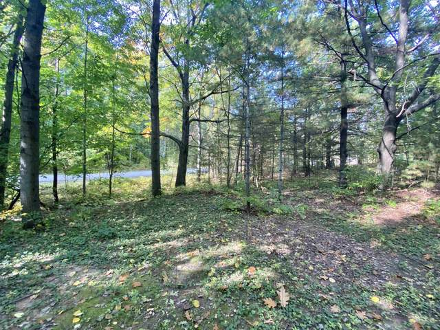 Beaumier Lane, Little Suamico, WI 54171 (#50248971) :: Town & Country Real Estate