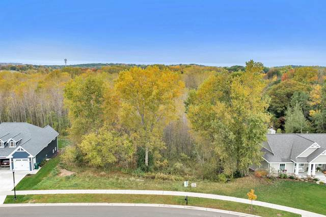 665 Olive Tree Drive, Green Bay, WI 54313 (#50249117) :: Todd Wiese Homeselling System, Inc.