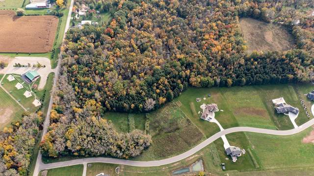 Timber Trail, Hortonville, WI 54944 (#50249154) :: Dallaire Realty