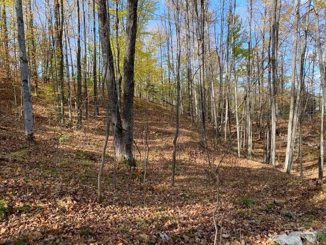N Maiden Lake Road, Mountain, WI 54149 (#50249791) :: Todd Wiese Homeselling System, Inc.