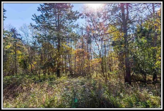 Oakwood Pass, New London, WI 54961 (#50133361) :: Ben Bartolazzi Real Estate Inc