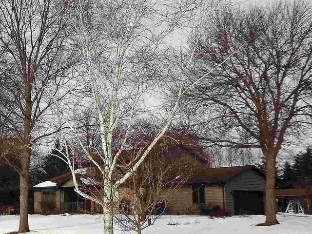 N2909 Rip Van Winkle Lane, Appleton, WI 54913 (#50213975) :: Todd Wiese Homeselling System, Inc.