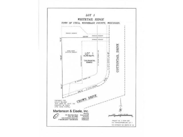 1707 Cottontail Drive, Oshkosh, WI 54904 (#50152205) :: Symes Realty, LLC