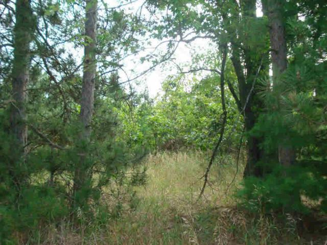 Buttercup Avenue, Hancock, WI 54943 (#50158717) :: Symes Realty, LLC