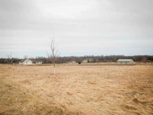 Anderley Lane #1, Lena, WI 54139 (#50160965) :: Dallaire Realty