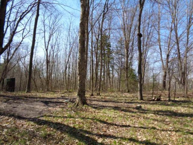 LT53 Moody Lake Woods Circle, Suring, WI 54174 (#50162515) :: Todd Wiese Homeselling System, Inc.