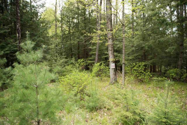 Eagles Way, Porterfield, WI 54159 (#50163756) :: Dallaire Realty