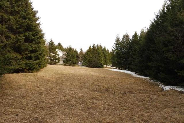 Samuel Drive, Larsen, WI 54947 (#50168657) :: Dallaire Realty