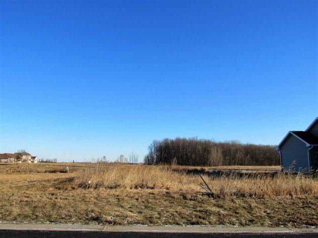 433 Peter Lynn Drive, Wrightstown, WI 54180 (#50175507) :: Dallaire Realty