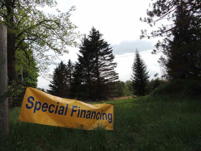 Martin Road, Crivitz, WI 54177 (#50177434) :: Dallaire Realty