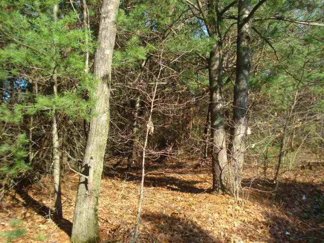 Shangrila Lane, Wautoma, WI 54982 (#50178024) :: Dallaire Realty