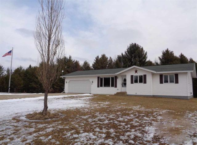 N8632 Hwy 22 Road, Neshkoro, WI 54960 (#50178173) :: Dallaire Realty