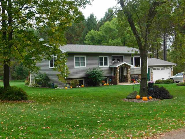 9138 Comet Road, Wittenberg, WI 54499 (#50179551) :: Symes Realty, LLC