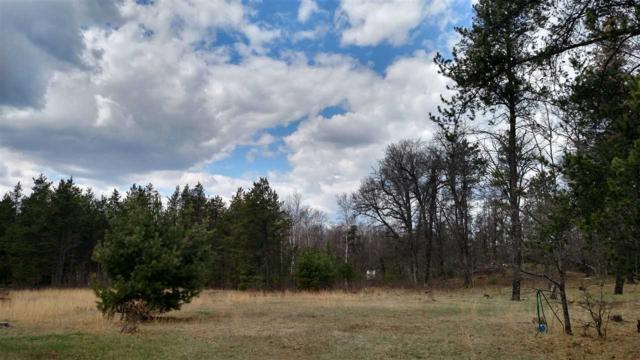 N12126 Bear Run Road, Athelstane, WI 54104 (#50179735) :: Todd Wiese Homeselling System, Inc.