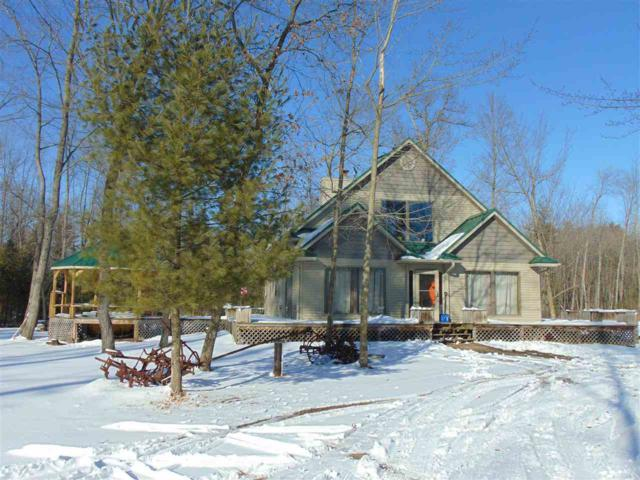 E7936 Puuri Road, Fremont, WI 54940 (#50180253) :: Todd Wiese Homeselling System, Inc.