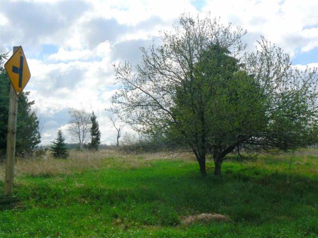 Ledge Crest Road, De Pere, WI 54115 (#50180565) :: Symes Realty, LLC
