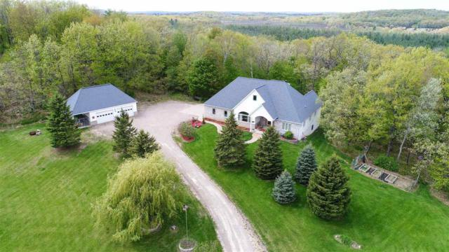 N5801 Blueberry Road, Scandinavia, WI 54977 (#50183622) :: Symes Realty, LLC