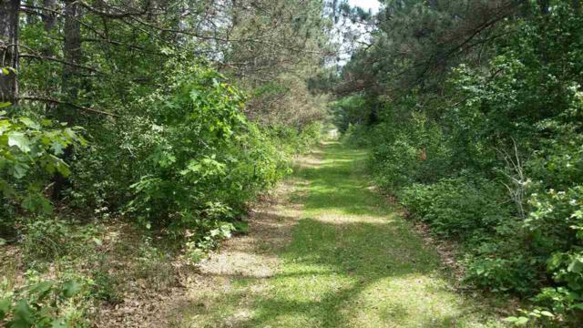 W10189 Bushke Road, Wautoma, WI 54982 (#50183986) :: Symes Realty, LLC