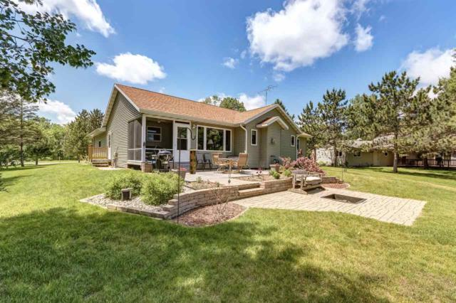 N9098 W Silver Springs Drive, Neshkoro, WI 54960 (#50184295) :: Symes Realty, LLC