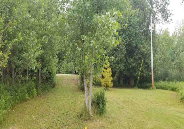 3218 Hwy Ee, Abrams, WI 54101 (#50188280) :: Dallaire Realty